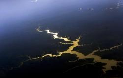 Fundo Amazônia vai investir R$ 150 milhões em novos projetos de conservação