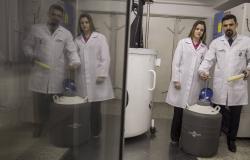 Congelamento do ovário, a esperança para engravidar depois do câncer