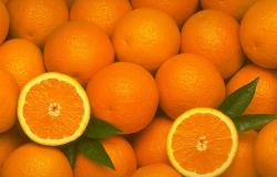 Mercado de suco de laranja deve se equilibrar em 2019