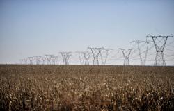 Energia Elétrica: Fevereiro seguirá com bandeira tarifária verde