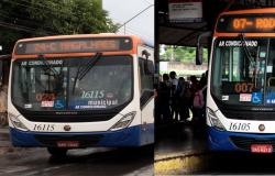 Novas linhas e novos veículos irão melhorar o transporte coletivo em Várzea Grande
