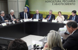 Tereza Cristina se reúne com produtores de arroz e diz que tentará resolver graves problemas do setor