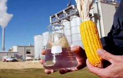Multinacional vira sócia de grupo mato-grossense para produção de etanol de milho