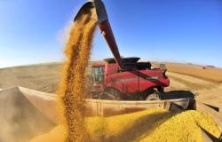 """Governo Federal avalia """"fim"""" da Lei Kandir; agro projeta perda de R$ 40 bi"""