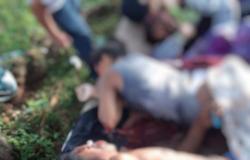 Quatro jovens são executados embaixo de árvore em MT
