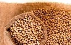 Cotações de soja se mantém acima dos US$ 8,00/bushel
