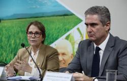 Acordo Mercosul-UE vai aumentar a competitividade da agricultura brasileira, diz ministra