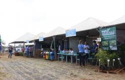 Fapemat promove difusão de tecnologias para a horticultura em Tangará da Serra
