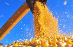 Puxadas pelo milho, exportações do agro atingem US$ 8,4 bilhões em outubro