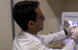 Pesquisadores criam minifígado funcional por impressão 3D