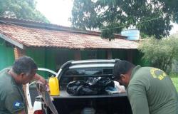 Três pessoas são conduzidas para delegacia por pesca ilegal