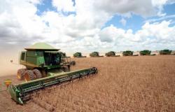 MT amplia área plantada e lidera arrecadação do agronegócio no Brasil