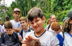 Escola de Itaúba aposta em aula de campo para ensinar bioma amazônico
