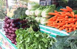 Legumes e milho registram alta de até 40% nos primeiros dias de janeiro em MT