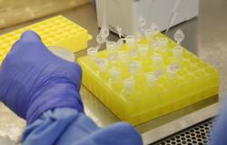 Testes em brasileiros trazidos da China dão negativo para coronavírus