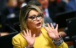 Líder do governo é designado relator do processo de Selma Arruda