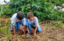 Escola de Alta Floresta aposta na conscientização dos alunos para o equilíbrio ecológico