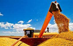Poucos estados apresentam atraso na colheita da soja do país