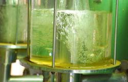 Governo entrega 18 licenças ambientais para o setor de etanol e energia
