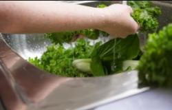 Vídeo orienta sobre cuidados com os alimentos em tempos de COVID-19