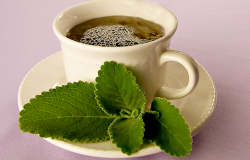 Checamos: Não há evidências de que chá de boldo cure 'sintomas' do coronavírus