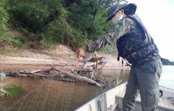 Operação de combate à pesca predatória aborda 161 pescadores nos rios Araguaia e Garças