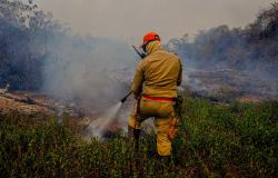 Governo federal confirma ajuda no combate a incêndios no Pantanal