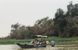 Equipes de fiscalização e resgate patrulham rios do Pantanal em busca de animais feridos