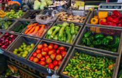 Incertezas na venda e estiagem mantêm preços de hortifrútis em alta