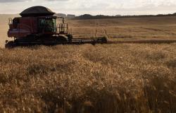 Crédito rural sobe 18% em relação ao último semestre de 2019