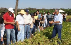 Empaer realiza 94 mil atendimentos e viabiliza R$ 82 milhões em projetos de crédito para agricultura familiar