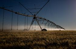 Decreto institui sistema que verifica emissões de carbono no agro