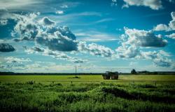 """Produtores rurais de MT são destaque nacional por darem """"exemplo de respeito ao meio ambiente"""""""