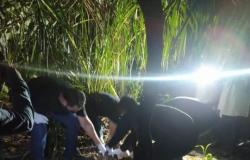 Polícia Civil prende padrasto por homicídio e ocultação de cadáver de adolescente desaparecido em Paranatinga