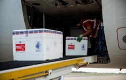 Colegiado define destinação da vacina Pfizer; Cuiabá receberá as 7.020 doses