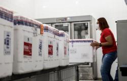 Colegiado define distribuição da Pfizer; Cuiabá e Várzea Grande receberão as 17.550 doses