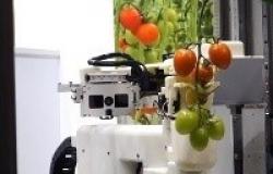 Soluções revolucionárias para a agricultura