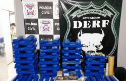 Polícia Civil encerra ano com 1.104 inquéritos concluídos e apreensão de uma tonelada de drogas