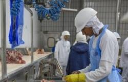Mais duas plantas frigoríficas de MT são habilitadas para vender para China