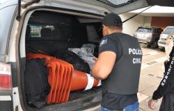 Operação Polygonum cumpre cinco prisões contra envolvidos em fraudes ambientais