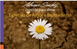 """Show """"Coletivo de Amor a Brumadinho"""" reúne artistas e atividades em São Paulo"""