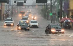 Chuva Alaga capital confira vídeos