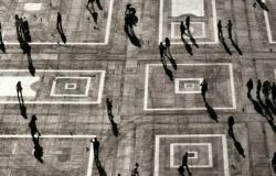 Reflexão em Tempos de Pandemia: Observações de Cientistas Sociais. Por  Lupita Amorim e M. Filipe Araujo