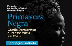 Curso Gratuito- Gestão Democrática e Transparência em Organizações da Sociedade Civil