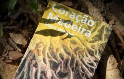 CORAÇÃO MADEIRA: nasce um romance! - Luiz Renato de Souza Pinto