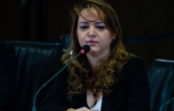 QUEIMADAS - Secretária diz que governo pede apoio das forças nacionais desde abril