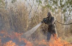 Parte do fogo no Pantanal começou em fazendas que vendem gado para grupos Amaggi e Bom Futuro