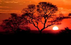 Plano de Marketing do Pantanal é concluído com apresentação pública