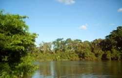 Bombeiros procuram homem que desapareceu no Rio Cuiabá