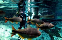 Nobres suspende atividades turísticas por tempo indeterminado
